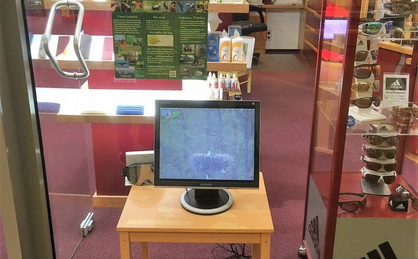 Bildübertragung der Storchenwebcam ins Südstadtcenter ist fertiggestellt